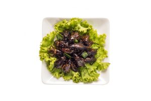 Food_insect_-_Fried_insects_or_Cricket_insect_crispy_with_pandan_after_fried_and_add_a_light_coating_of_sauce_and_garnish_Thai_pepper_powder_on_white_dish_with_isolated_on_white_background,_Top_view