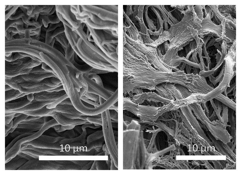 20180205_Biobasierte_Verbundmaterialien.jpg