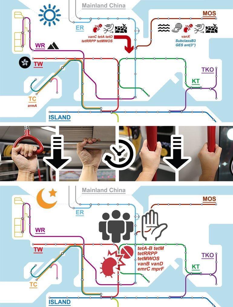 Mikroben U-Bahn