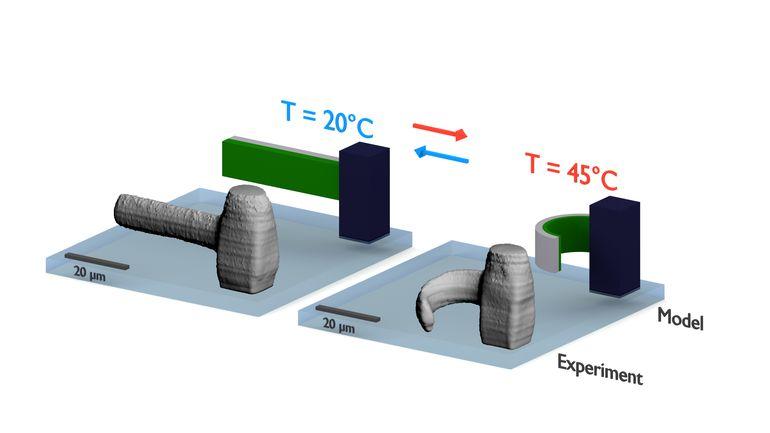 20190128_3D-Druck-Bewegliche_Mikrostrukturen.jpg