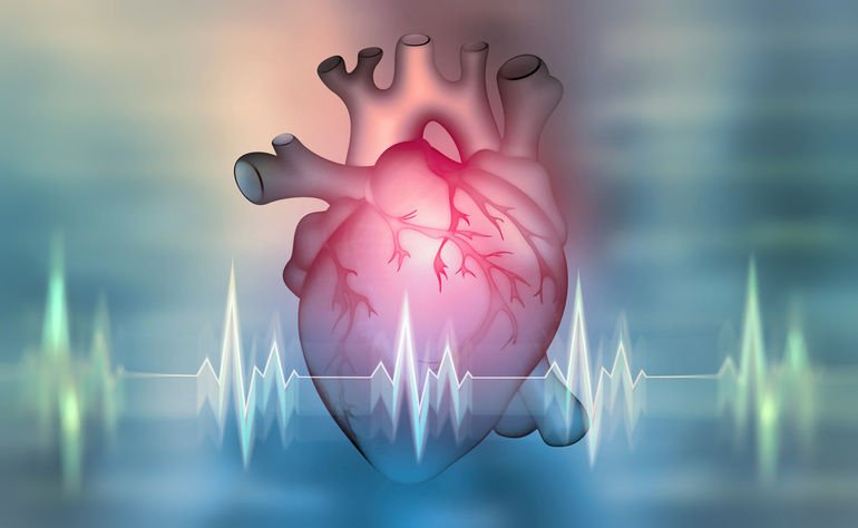 Human_heart._3D_illustration_on_a_medical_background