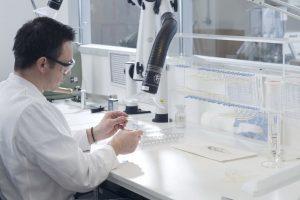 Anpassungsgesetz BVMed medical device regulation