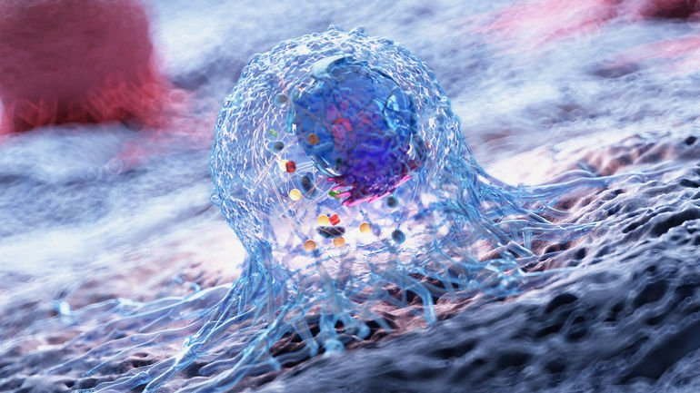 3d_rendered_illustration_of_the_anatomy_of_a_cancer_cell