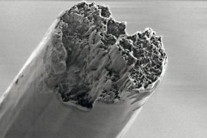 Biomaterial_ausschnitt.jpg
