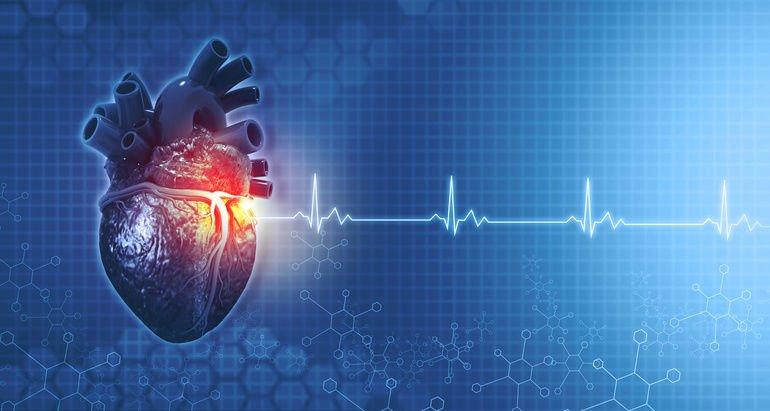 Anatomy_of_human_heart_on_ecg_medical_background._3d_render_