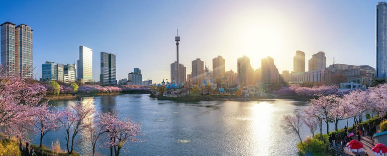 Panorama_of_cheey_blossom_park_in_seoul_city_with_sunset_in_day_time,_South_Korea